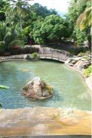 Réduction photo IF000041.jpg. Guadeloupe / Deshaies / Le par...